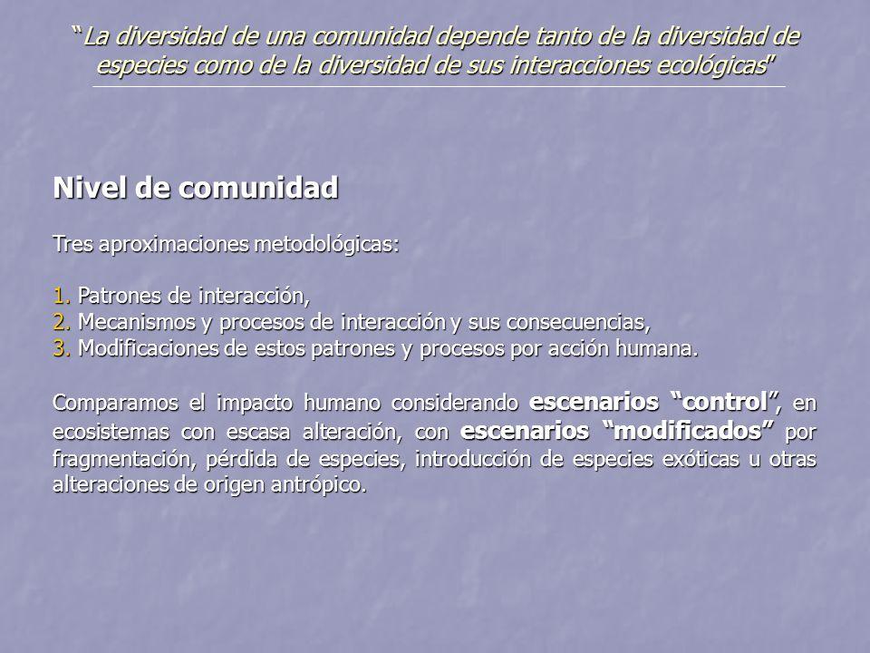 Nivel de comunidad Tres aproximaciones metodológicas: 1. Patrones de interacción, 2. Mecanismos y procesos de interacción y sus consecuencias, 3. Modi