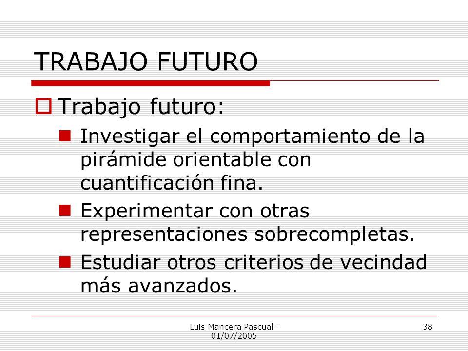 Luis Mancera Pascual - 01/07/2005 38 TRABAJO FUTURO Trabajo futuro: Investigar el comportamiento de la pirámide orientable con cuantificación fina. Ex