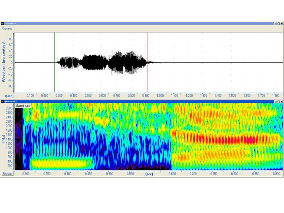 Responde: Número de sonidos. Tipo de sonidos. Breve explicación de cada uno