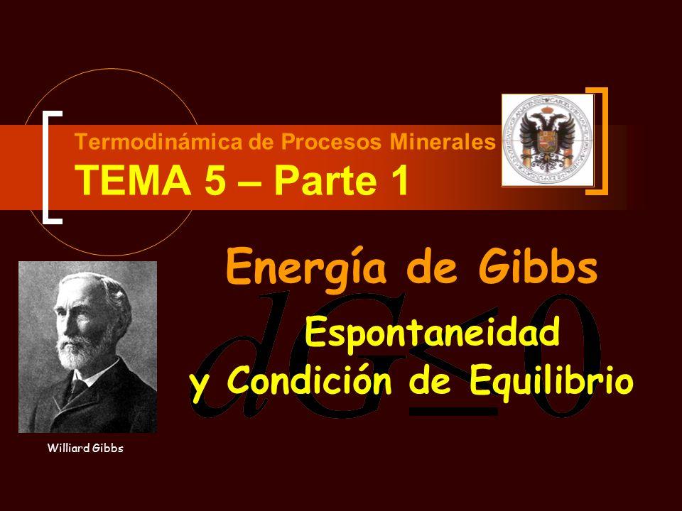Espontaneidad Termodinámica de Procesos Minerales TEMA 5 – Parte 1 Energía de Gibbs Williard Gibbs y Condición de Equilibrio