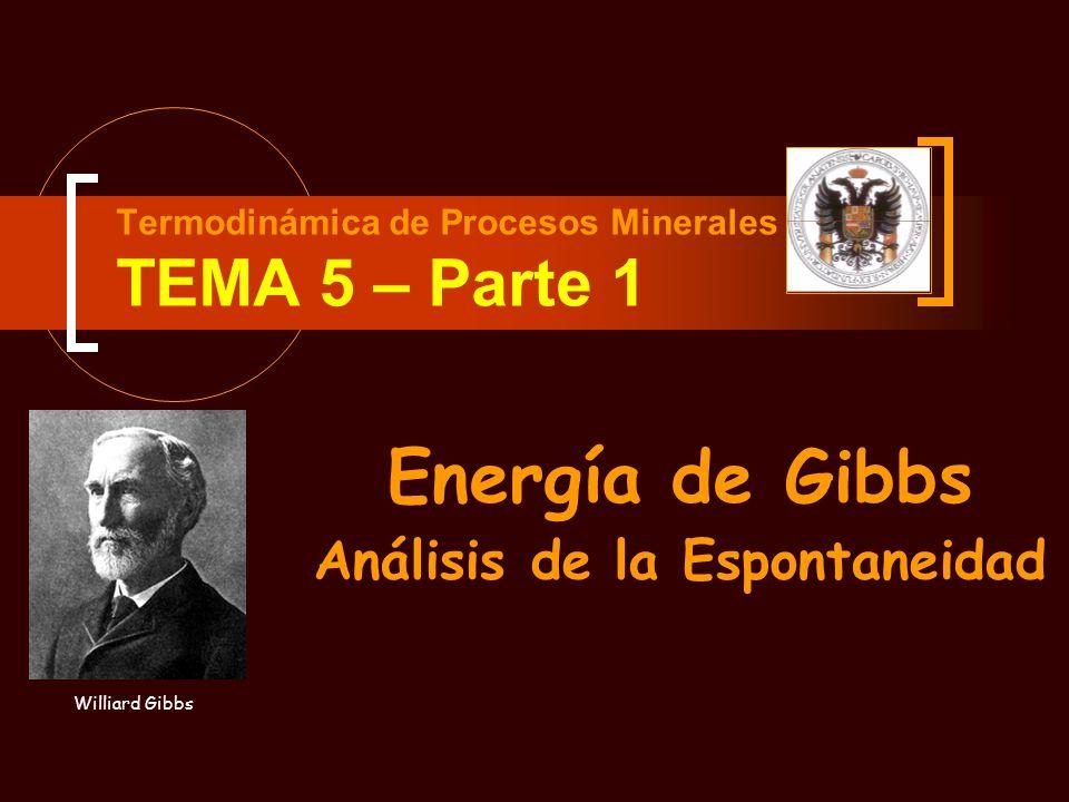 Termodinámica de Procesos Minerales TEMA 5 – Parte 1 Energía de Gibbs Análisis de la Espontaneidad Williard Gibbs