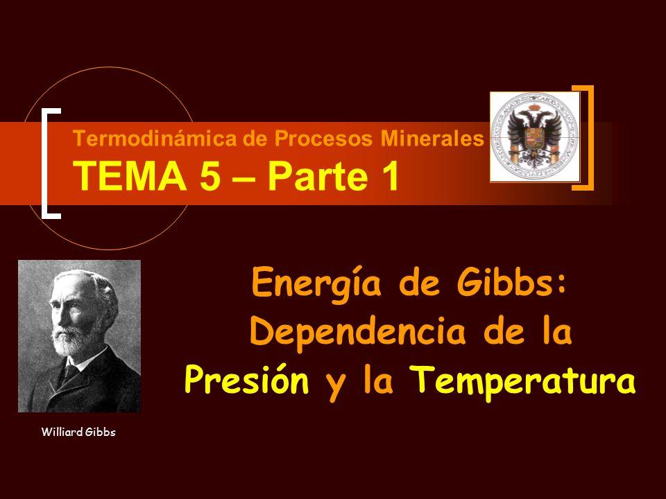 Termodinámica de Procesos Minerales TEMA 5 – Parte 1 Energía de Gibbs: Dependencia de la Presión y la Temperatura Williard Gibbs