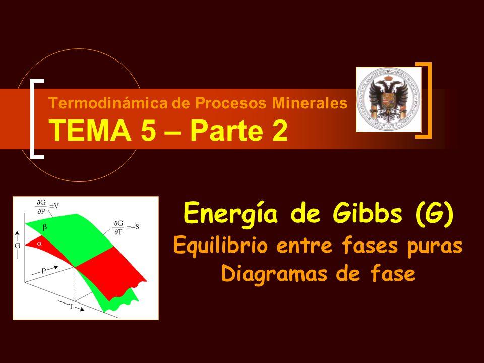 Termodinámica de Procesos Minerales TEMA 5 – Parte 2 Energía de Gibbs (G) Equilibrio entre fases puras Diagramas de fase