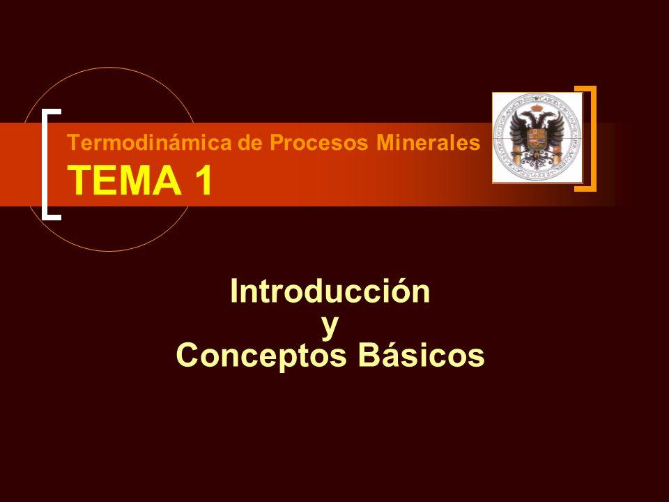 Termodinámica de Procesos Minerales TEMA 1 Introducción y Conceptos Básicos