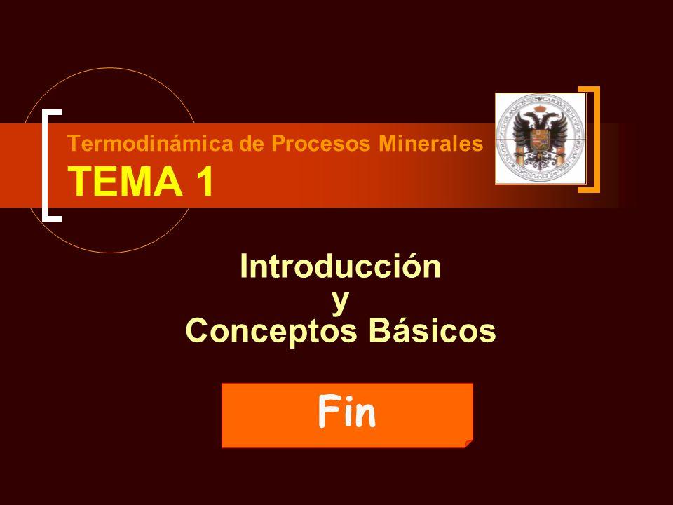 Termodinámica de Procesos Minerales TEMA 1 Introducción y Conceptos Básicos Fin