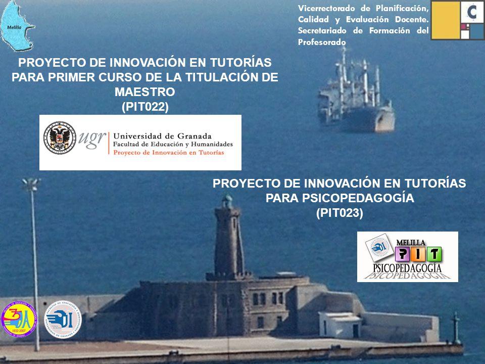 PROYECTO DE INNOVACIÓN EN TUTORÍAS PARA PRIMER CURSO DE LA TITULACIÓN DE MAESTRO (PIT022) PROYECTO DE INNOVACIÓN EN TUTORÍAS PARA PSICOPEDAGOGÍA (PIT0