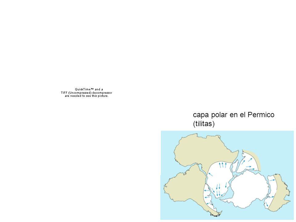 capa polar en el Permico (tilitas)