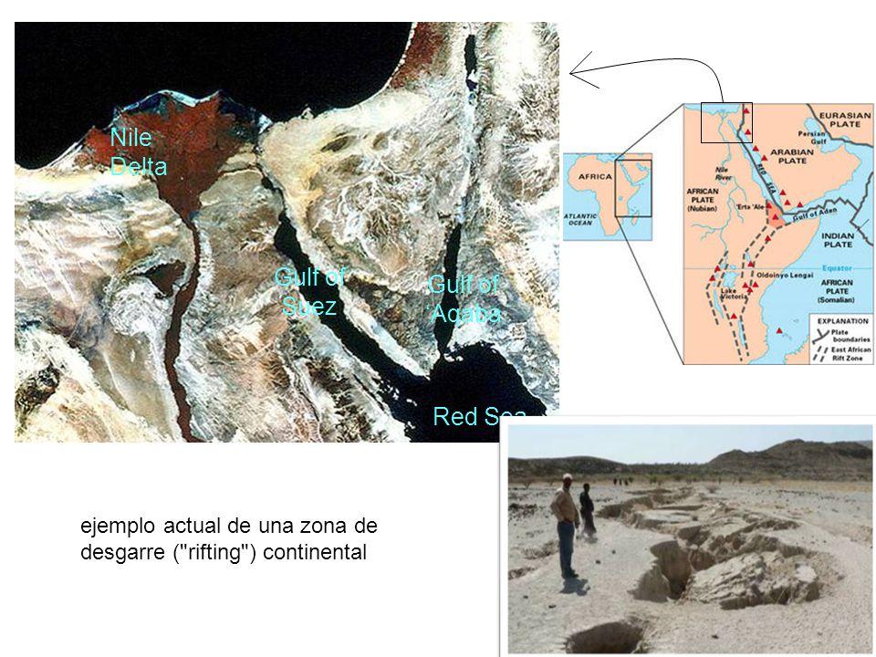 Nile Delta Gulf of Suez Gulf of Aqaba Red Sea ejemplo actual de una zona de desgarre ( rifting ) continental