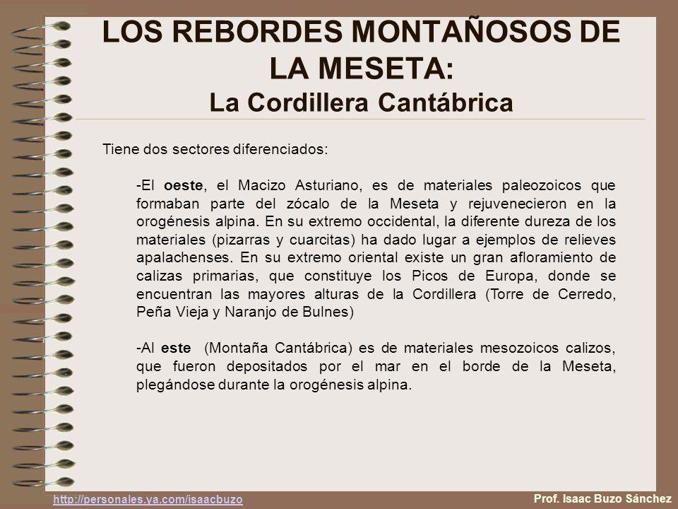 LOS REBORDES MONTAÑOSOS DE LA MESETA: La Cordillera Cantábrica Tiene dos sectores diferenciados: -El oeste, el Macizo Asturiano, es de materiales pale