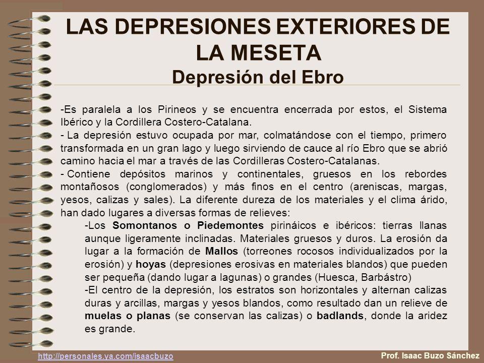 LAS DEPRESIONES EXTERIORES DE LA MESETA Depresión del Ebro -Es paralela a los Pirineos y se encuentra encerrada por estos, el Sistema Ibérico y la Cor