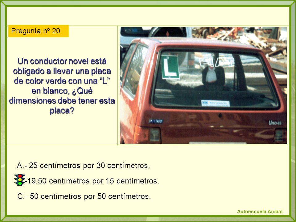 Un conductor novel está obligado a llevar una placa de color verde con una L en blanco, ¿Qué dimensiones debe tener esta placa? A.- 25 centímetros por