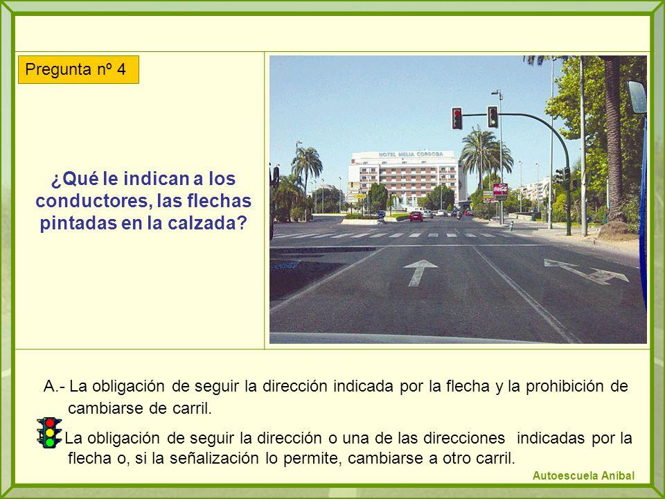 ¿Es correcto el comportamiento del conductor que observa en la fotografía.
