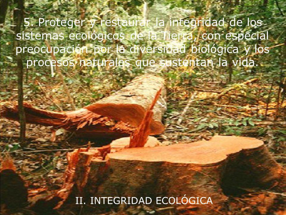 I. RESPETO Y CUIDADO DE LA COMUNIDAD DE VIDA 4. Asegurar que los frutos y la belleza de la Tierra se preserven para las generaciones presentes y futur