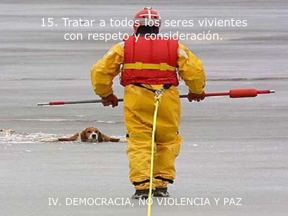 IV. DEMOCRACIA, NO VIOLENCIA Y PAZ 14. Integrar en la educación formal y en el aprendizaje a lo largo de la vida las habilidades, el conocimiento y lo