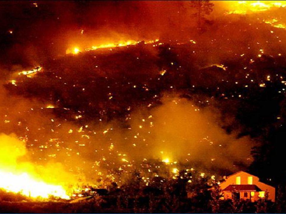 Un momento crítico de la historia de la Tierra, en el que el ser humano padece desgracias naturales...