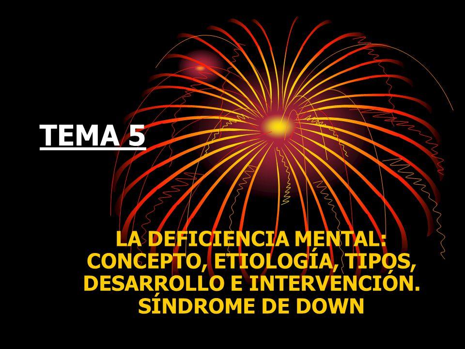 TEMA 5 LA DEFICIENCIA MENTAL: CONCEPTO, ETIOLOGÍA, TIPOS, DESARROLLO E INTERVENCIÓN. SÍNDROME DE DOWN