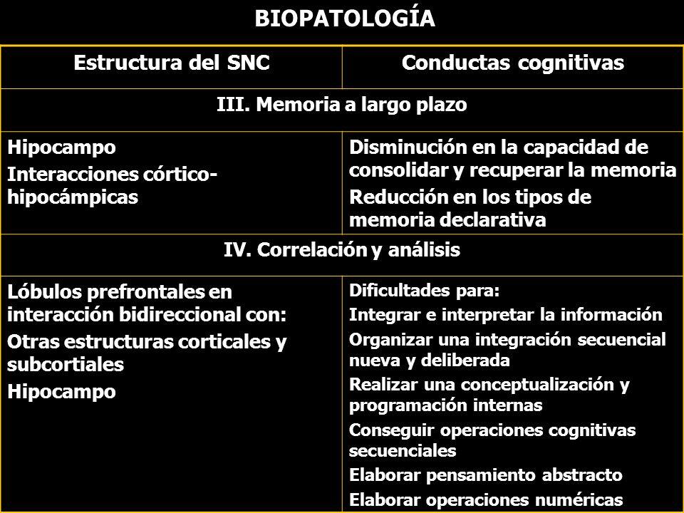 BIOPATOLOGÍA Estructura del SNCConductas cognitivas III. Memoria a largo plazo Hipocampo Interacciones córtico- hipocámpicas Disminución en la capacid