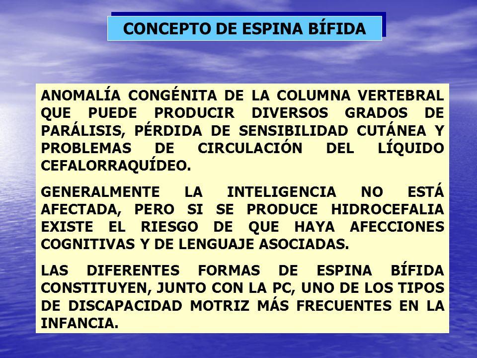 CONCEPTO DE ESPINA BÍFIDA ANOMALÍA CONGÉNITA DE LA COLUMNA VERTEBRAL QUE PUEDE PRODUCIR DIVERSOS GRADOS DE PARÁLISIS, PÉRDIDA DE SENSIBILIDAD CUTÁNEA