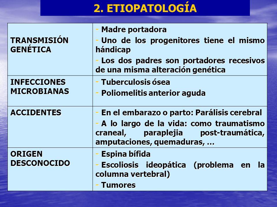 2. ETIOPATOLOGÍA TRANSMISIÓN GENÉTICA - Madre portadora - Uno de los progenitores tiene el mismo hándicap - Los dos padres son portadores recesivos de