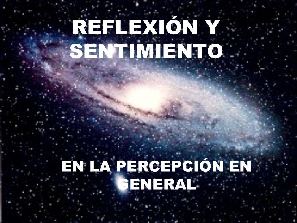 REFLEXIÓN Y SENTIMIENTO EN LA PERCEPCIÓN EN GENERAL