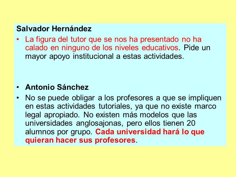 Salvador Hernández La figura del tutor que se nos ha presentado no ha calado en ninguno de los niveles educativos.