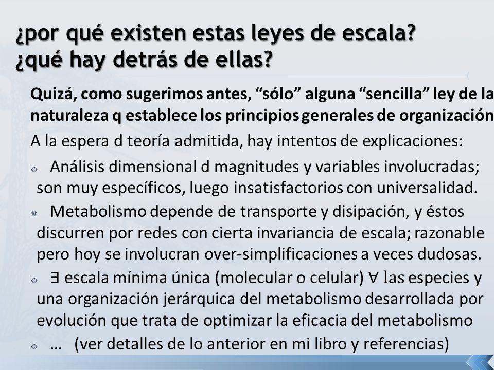 Quizá, como sugerimos antes, sólo alguna sencilla ley de la naturaleza q establece los principios generales de organización A la espera d teoría admit