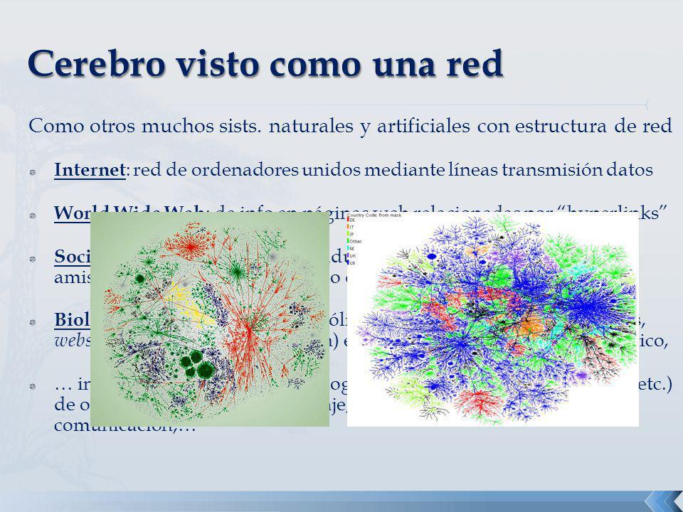 Como otros muchos sists. naturales y artificiales con estructura de red Internet : red de ordenadores unidos mediante líneas transmisión datos World W