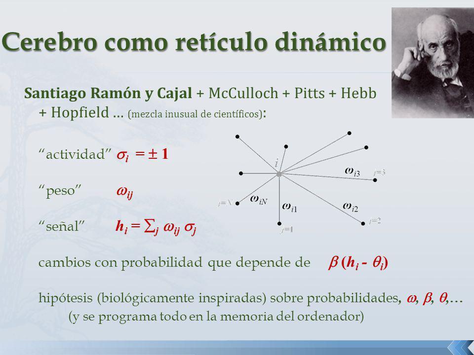 Santiago Ramón y Cajal + McCulloch + Pitts + Hebb + Hopfield … (mezcla inusual de científicos) : actividad i = 1 peso ij señal h i = j ij j cambios co