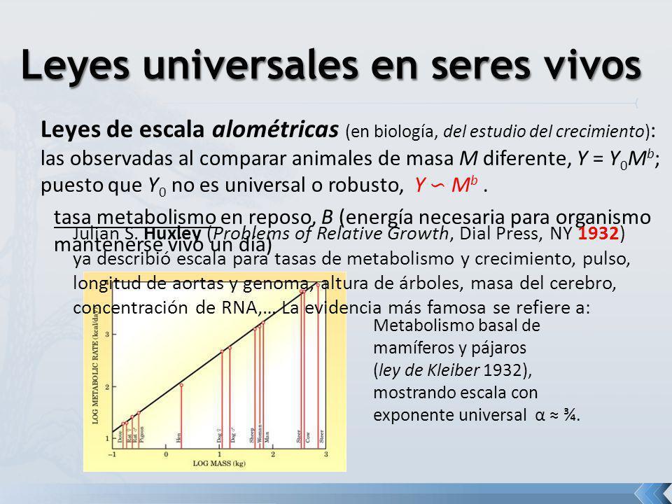 Leyes de escala alométricas (en biología, del estudio del crecimiento) : las observadas al comparar animales de masa M diferente, Y = Y 0 M b ; puesto