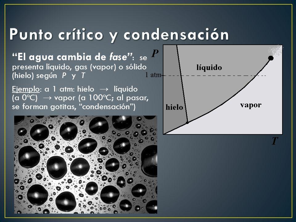 El agua cambia de fase : se presenta líquido, gas (vapor) o sólido (hielo) según P y T Ejemplo: a 1 atm: hielo líquido (a 0ºC) vapor (a 100ºC; al pasar, se forman gotitas, condensación)