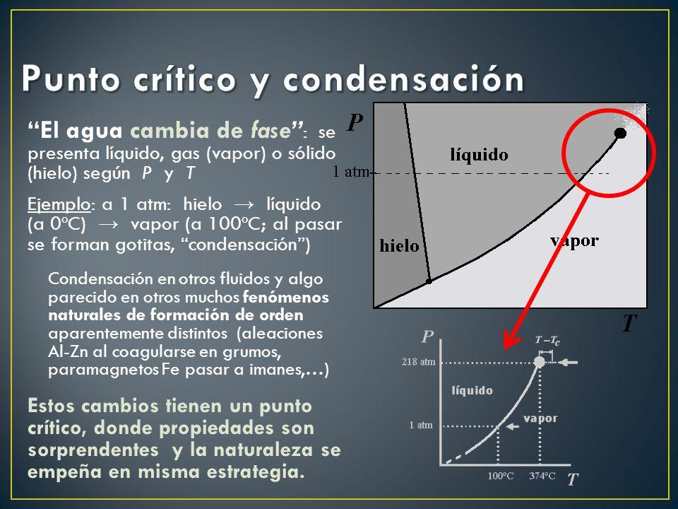 El agua cambia de fase : se presenta líquido, gas (vapor) o sólido (hielo) según P y T Ejemplo: a 1 atm: hielo líquido (a 0ºC) vapor (a 100ºC; al pasar se forman gotitas, condensación) Condensación en otros fluidos y algo parecido en otros muchos fenómenos naturales de formación de orden aparentemente distintos (aleaciones Al-Zn al coagularse en grumos, paramagnetos Fe pasar a imanes,…) Estos cambios tienen un punto crítico, donde propiedades son sorprendentes y la naturaleza se empeña en misma estrategia.