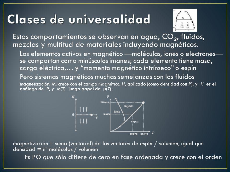 Estos comportamientos se observan en agua, CO 2, fluidos, mezclas y multitud de materiales incluyendo magnéticos. Los elementos activos en magnético m