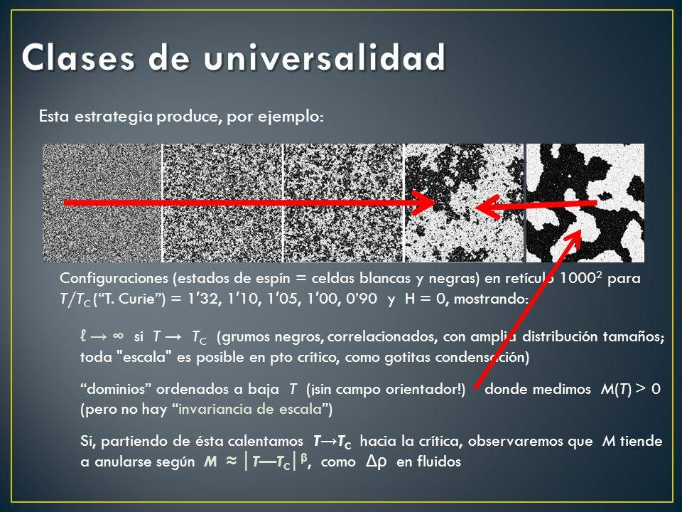 Esta estrategia produce, por ejemplo: Configuraciones (estados de espín = celdas blancas y negras) en retículo 1000 2 para T/T C (T. Curie) = 1 32, 1