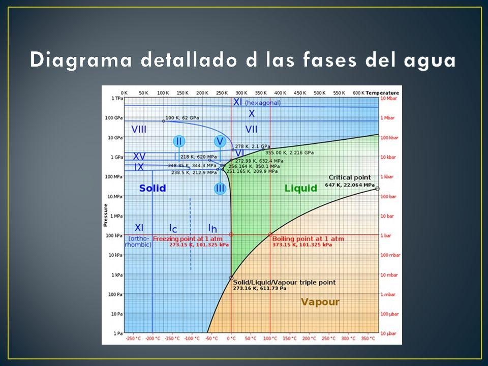 Simulaciones de la percolación están siendo muy útiles de hecho en la planificación de sistemas ecológicos.