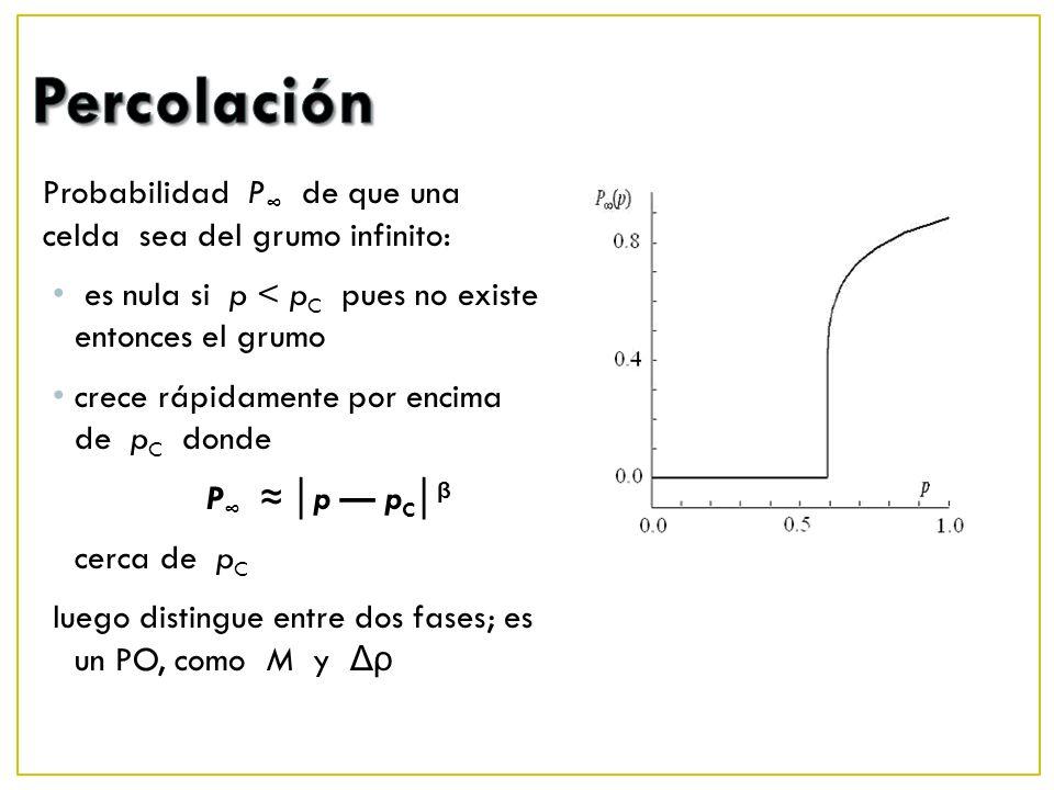 Probabilidad P de que una celda sea del grumo infinito: es nula si p < p C pues no existe entonces el grumo crece rápidamente por encima de p C donde P p p C β cerca de p C luego distingue entre dos fases; es un PO, como M y Δρ