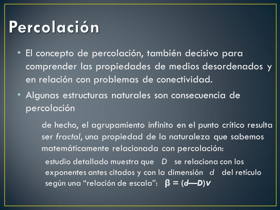 El concepto de percolación, también decisivo para comprender las propiedades de medios desordenados y en relación con problemas de conectividad. Algun
