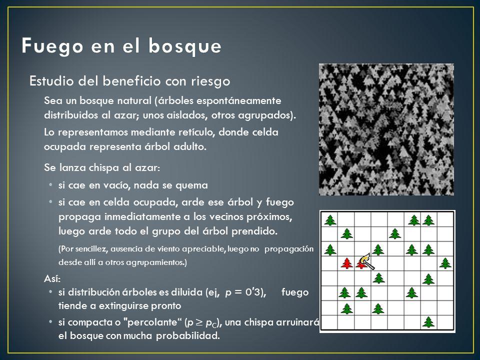 Estudio del beneficio con riesgo Sea un bosque natural (árboles espontáneamente distribuidos al azar; unos aislados, otros agrupados). Lo representamo
