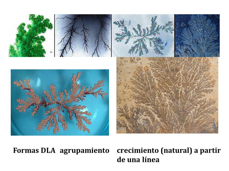 Formas DLAagrupamientocrecimiento (natural) a partir de una línea