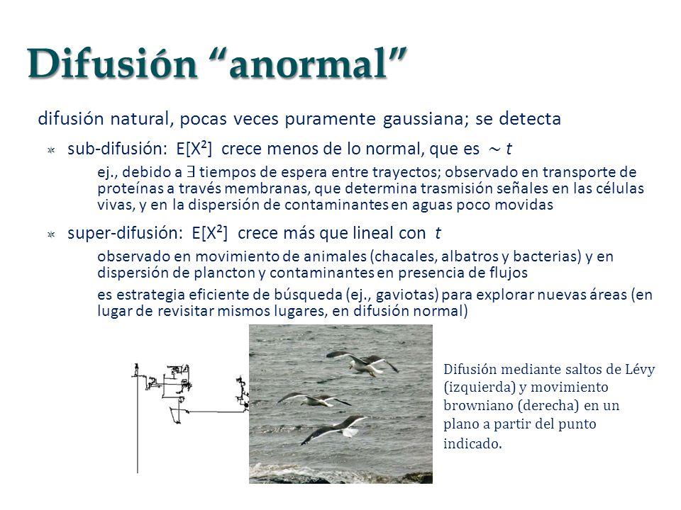 difusión natural, pocas veces puramente gaussiana; se detecta sub-difusión: E[X²] crece menos de lo normal, que es t ej., debido a tiempos de espera e