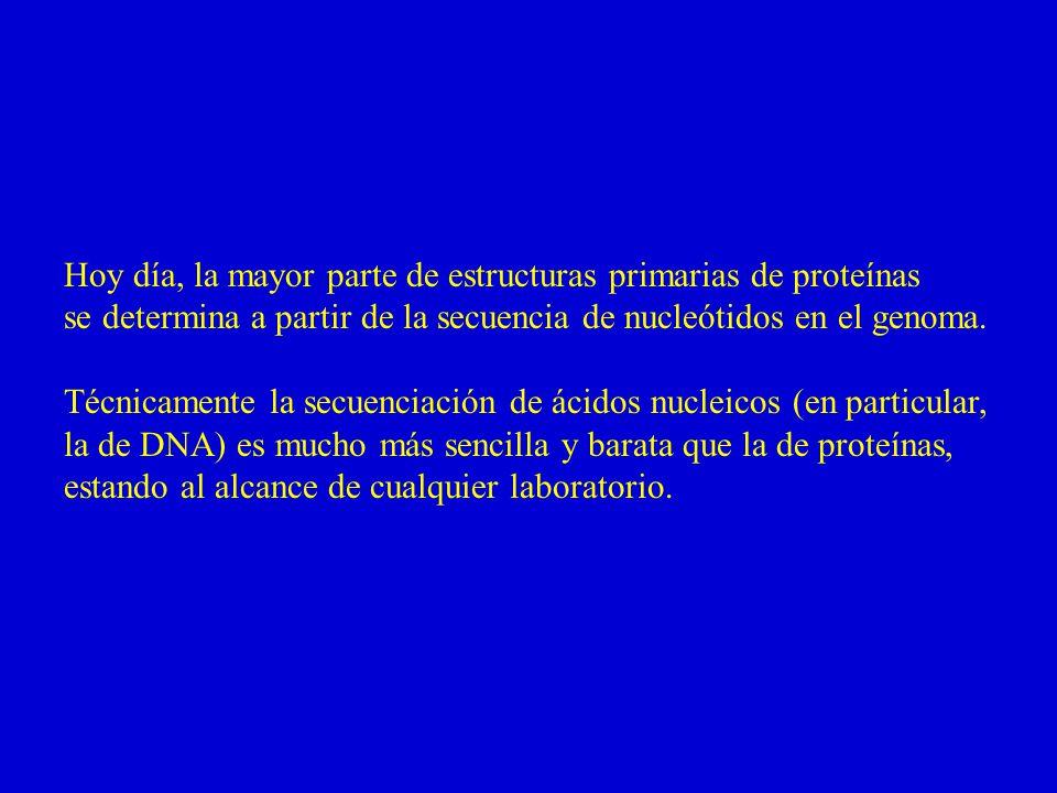 Hoy día, la mayor parte de estructuras primarias de proteínas se determina a partir de la secuencia de nucleótidos en el genoma.