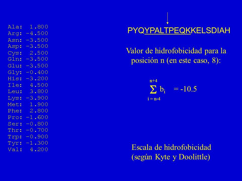 PYQYPALTPEQKKELSDIAH Valor de hidrofobicidad para la posición n (en este caso, 8): i = n-4 n+4 bibi = -10.5 Escala de hidrofobicidad (según Kyte y Doolittle)