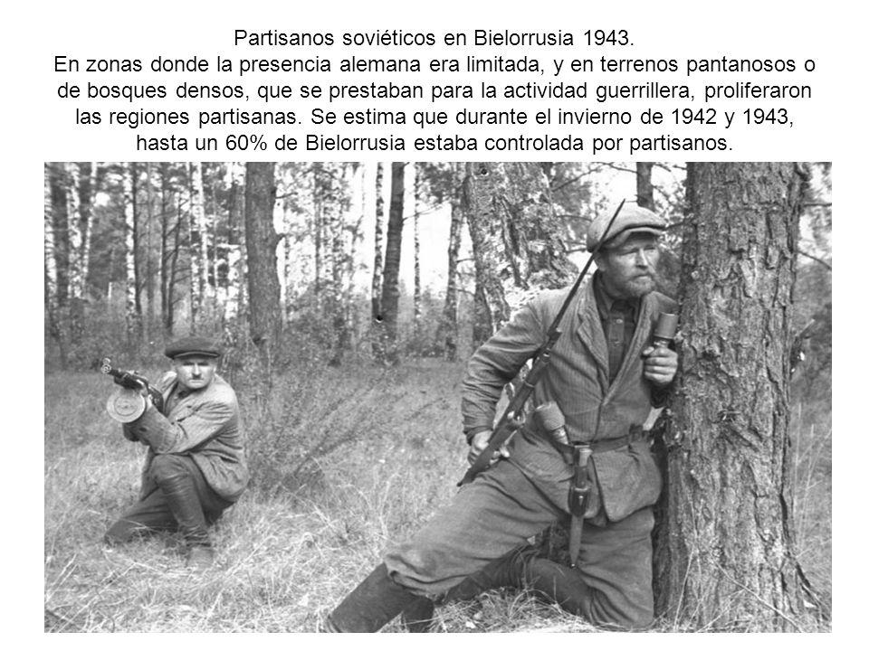 Partisanos soviéticos en Bielorrusia 1943. En zonas donde la presencia alemana era limitada, y en terrenos pantanosos o de bosques densos, que se pres