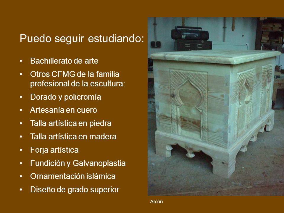 Bachillerato de arte Otros CFMG de la familia profesional de la escultura: Dorado y policromía Artesanía en cuero Talla artística en piedra Talla artí