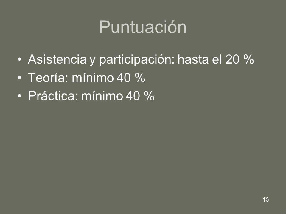 13 Puntuación Asistencia y participación: hasta el 20 % Teoría: mínimo 40 % Práctica: mínimo 40 %