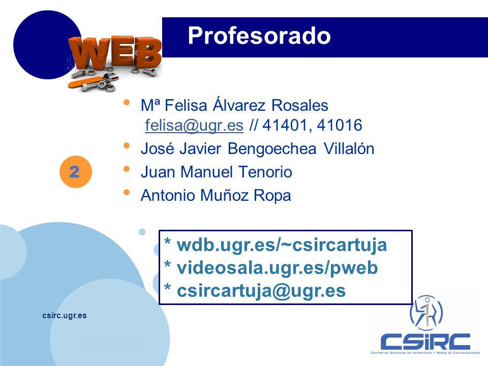 www.company.com Profesorado csirc.ugr.es Mª Felisa Álvarez Rosales felisa@ugr.es // 41401, 41016felisa@ugr.es José Javier Bengoechea Villalón Juan Manuel Tenorio Antonio Muñoz Ropa 2 * wdb.ugr.es/~csircartuja * videosala.ugr.es/pweb * csircartuja@ugr.es