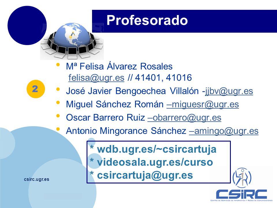 www.company.com Profesorado csirc.ugr.es Mª Felisa Álvarez Rosales felisa@ugr.es // 41401, 41016felisa@ugr.es José Javier Bengoechea Villalón -jjbv@ugr.esjjbv@ugr.es Miguel Sánchez Román –miguesr@ugr.es–miguesr@ugr.es Oscar Barrero Ruiz –obarrero@ugr.es–obarrero@ugr.es Antonio Mingorance Sánchez –amingo@ugr.es–amingo@ugr.es * wdb.ugr.es/~csircartuja * videosala.ugr.es/curso * csircartuja@ugr.es 2
