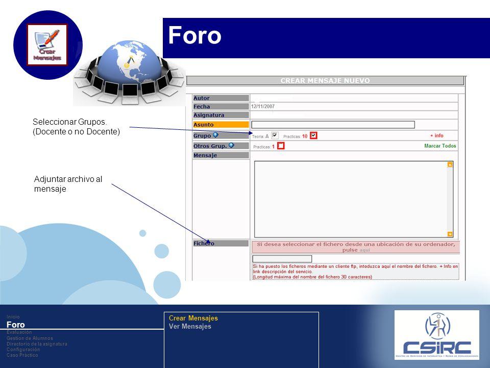 www.company.com Adjuntar archivo al mensaje Seleccionar Grupos. (Docente o no Docente) Inicio Foro Evaluación Gestion de Alumnos Directorio de la asig