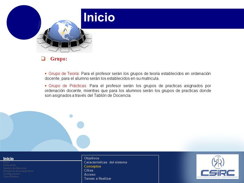 www.company.com Inicio Grupo: Grupo de Teoría: Para el profesor serán los grupos de teoría establecidos en ordenación docente, para el alumno serán los establecidos en su matricula.