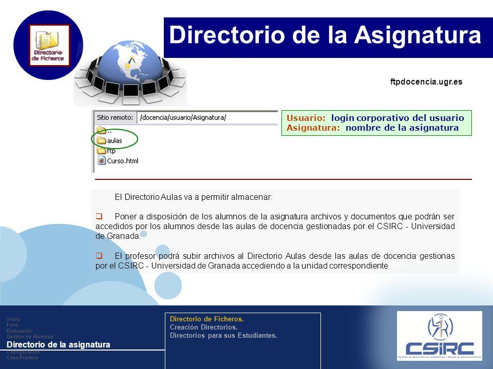 www.company.com El Directorio Aulas va a permitir almacenar: Poner a disposición de los alumnos de la asignatura archivos y documentos que podrán ser