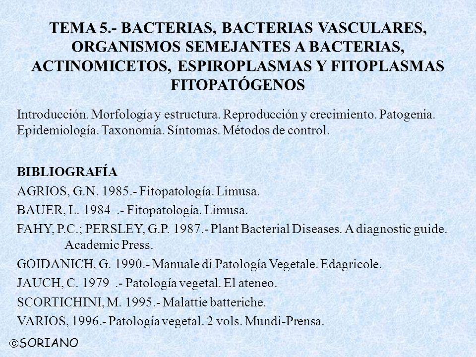 SORIANO TEMA 5.- BACTERIAS, BACTERIAS VASCULARES, ORGANISMOS SEMEJANTES A BACTERIAS, ACTINOMICETOS, ESPIROPLASMAS Y FITOPLASMAS FITOPATÓGENOS Introducción.